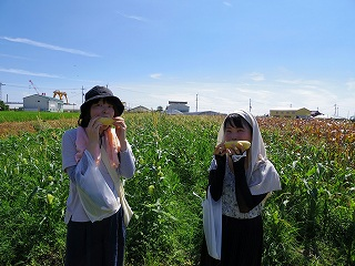 20160807 スイートコーン収穫祭_3414.jpg