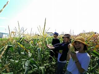 20160807 スイートコーン収穫祭_8831.jpg